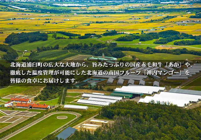 北海道浦臼町より神内和牛あか、神内マンゴーをお届けします。