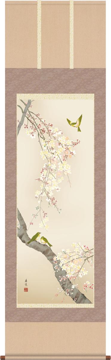 春掛 掛け軸-桜花/西尾香悦(尺五)床の間 和室 モダン オシャレ 高級 ギフト かけじく 表装 壁掛け つるす