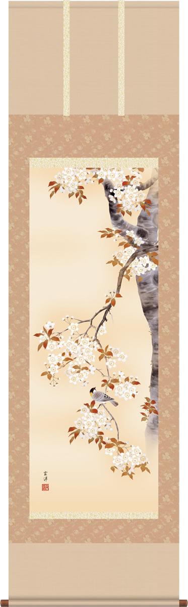 春掛 掛け軸-桜花/近藤玄洋(尺五)床の間 和室 モダン オシャレ 高級 ギフト かけじく 表装 壁掛け つるす