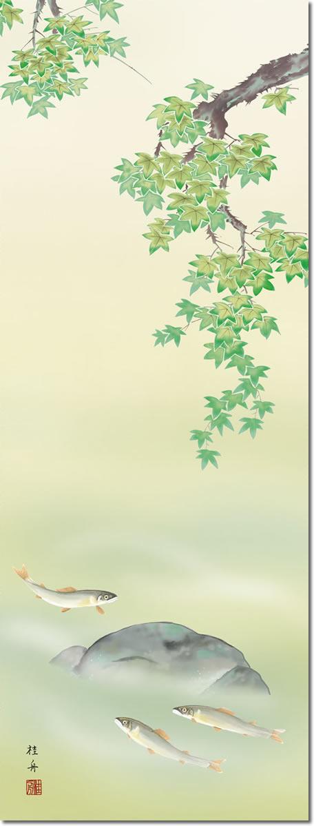 夏掛 掛け軸-楓に鮎/長江桂舟(尺五)床の間 和室 モダン オシャレ 高級 贈答 かけじく 表装 壁掛け 吊るし インテリア