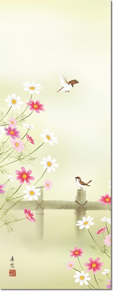 秋の掛け軸 秋桜 西尾香悦 尺三 小振り 本表装 床の間 花鳥画 モダン 掛軸[送料無料]