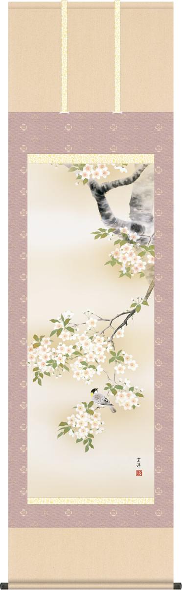 春掛け 掛け軸 桜花に小鳥 近藤玄澄 尺五 本表装 床の間 花鳥画 モダン 掛軸[送料無料]