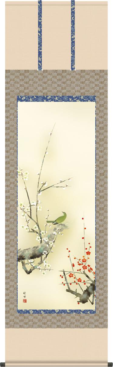 春掛け 掛け軸 紅白梅に鶯 田村竹世 尺五 本表装 正絹 床の間 花鳥画 モダン 掛軸[送料無料]