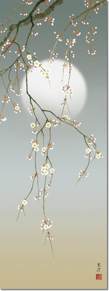 春掛け 掛け軸 夜桜 清水玄澄 尺五 本表装 床の間 花鳥画 モダン 掛軸[送料無料]