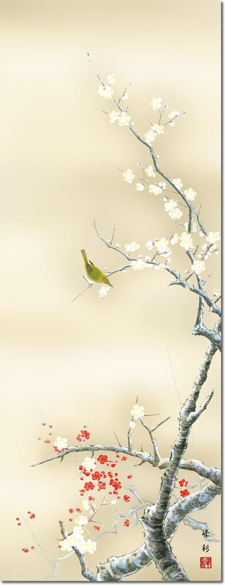 春掛け 掛け軸 紅白梅に鶯 園田峰彩 尺五 本表装 床の間 花鳥画 モダン 掛軸[送料無料]