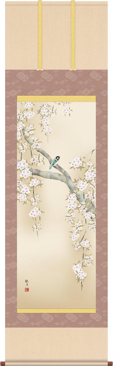 春掛け 掛け軸 桜花に小鳥 森山観月 尺五 本表装 床の間 花鳥画 モダン 掛軸[送料無料]
