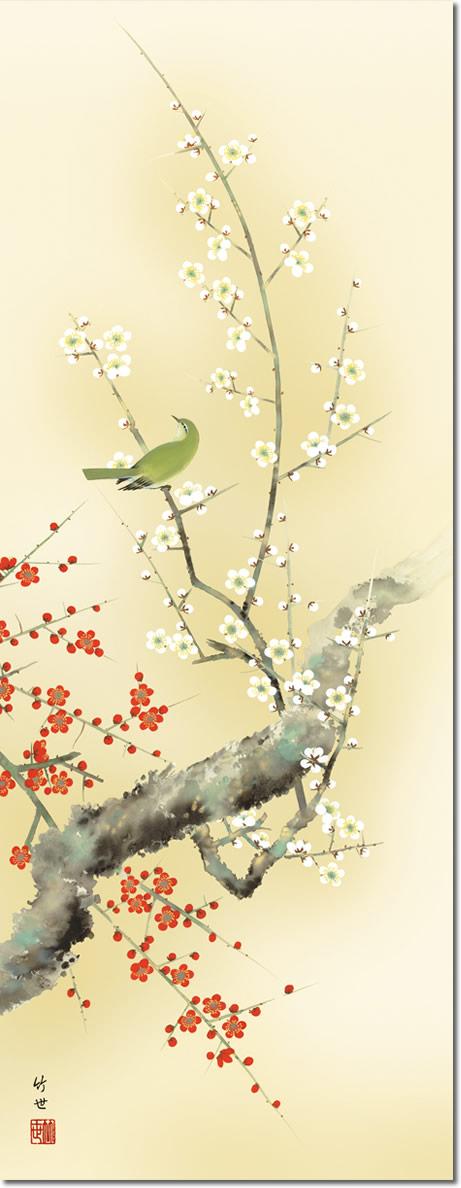 春掛け 掛け軸 紅白梅に鶯 田村竹世 尺三 小振り 本表装 床の間 花鳥画 モダン 掛軸[送料無料]