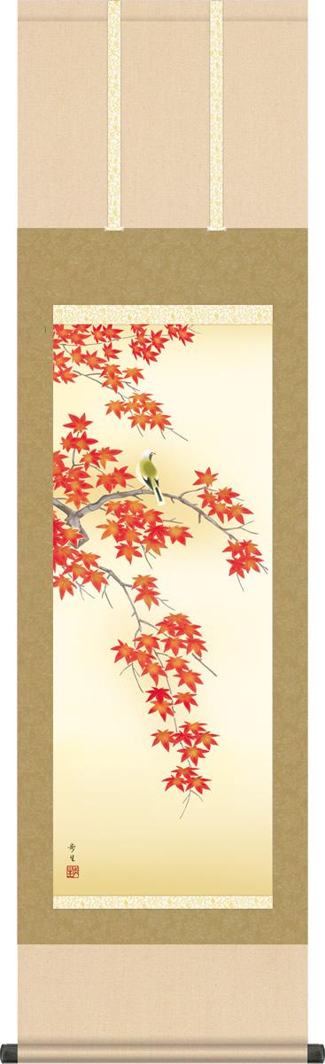 秋掛け 掛け軸 紅葉に小鳥 北山歩生 尺三 小振り 本表装 床の間 花鳥画 モダン 掛軸[送料無料]