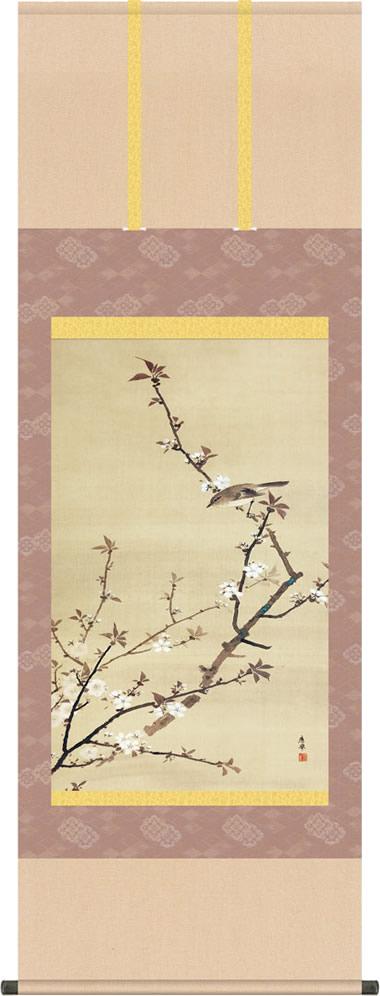 掛け軸-桜小禽図/円山 応挙(尺五立) 床の間 和室 お洒落 モダン さくらしょうきんず