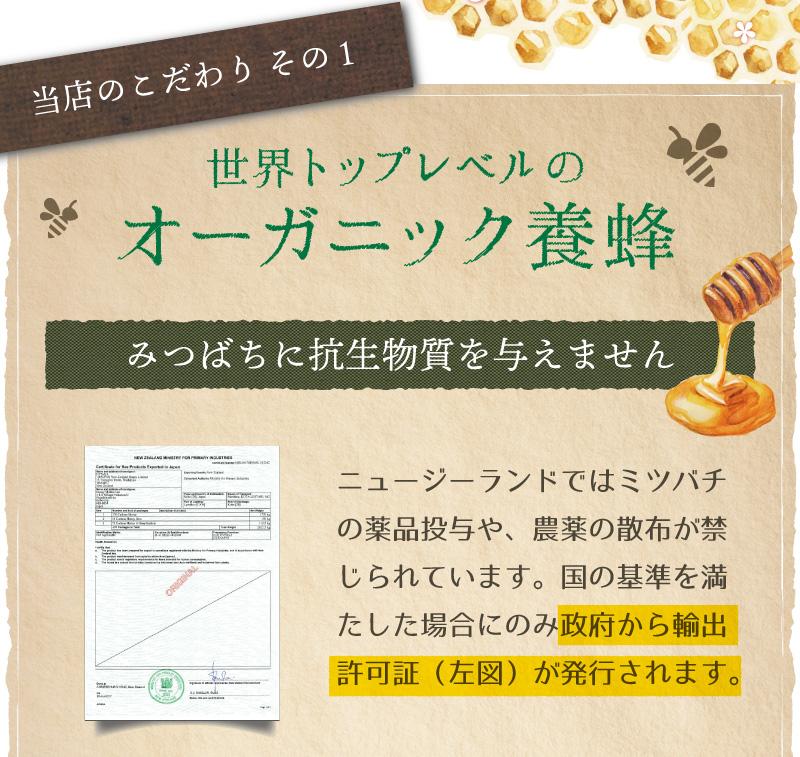 オーガニック養蜂1