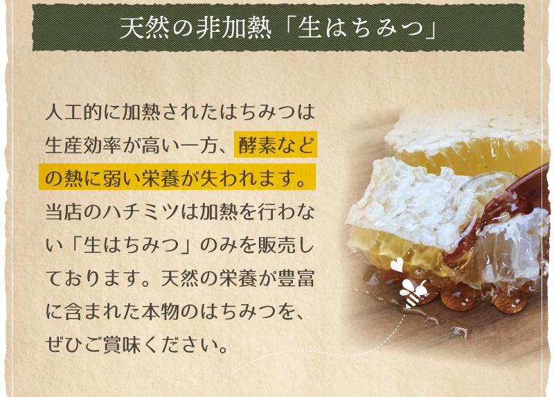 オーガニック養蜂2
