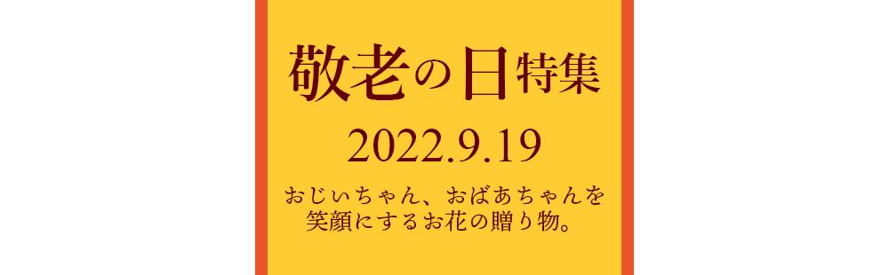 花キューピットの敬老の日プレゼント・ギフト特集 2020