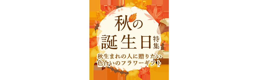 花キューピットの誕生日におすすめ!人気のプレゼント特集 2019