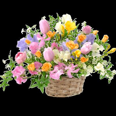 カラフル カラフル 気持ちが明るくなる|花キューピットのチューリップ特集 2020