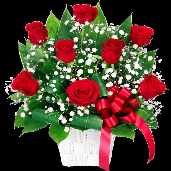 赤のバラ 赤のバラ 情熱的でエレガント|花キューピットのチューリップ特集 2020