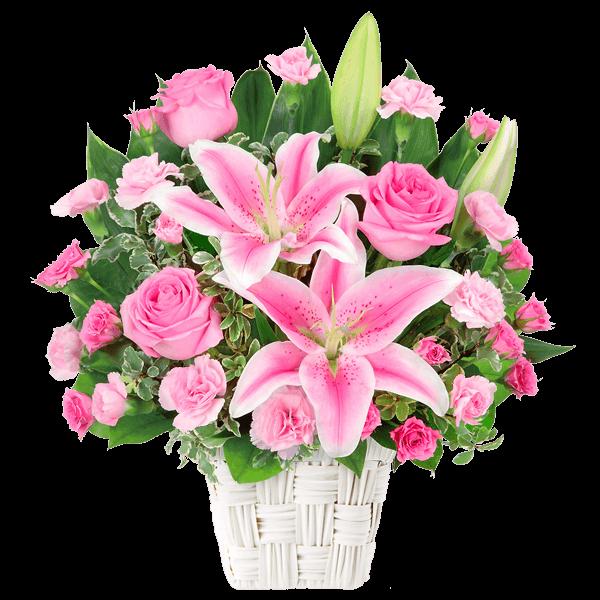 6月の誕生花(ピンクバラ等)