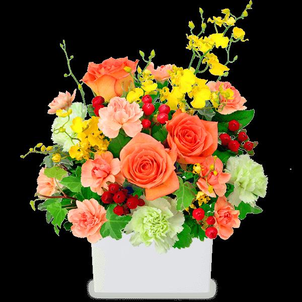 10月の誕生花(オレンジバラ)