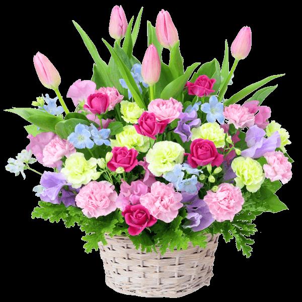 チューリップおすすめランキング チューリップおすすめランキング 春の人気No.1ギフト|花キューピットのチューリップ特集 2020