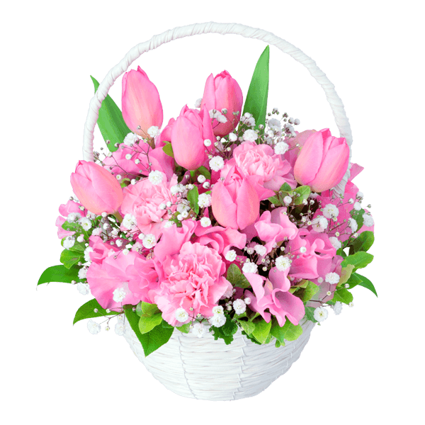 ピンク&レッド ピンク&レッド 優しくて可愛らしい|花キューピットのチューリップ特集 2020