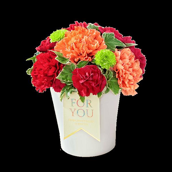母の日 アレンジメント・花束特集