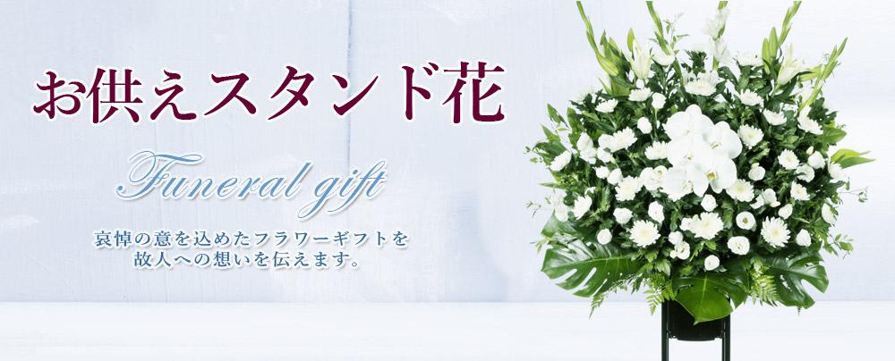 秋の花贈り・・・展覧会・発表会など秋はいろいろな記念やお祝いのある季節。「秋の花贈り」に最適な秋色のお花を取りそろえました。