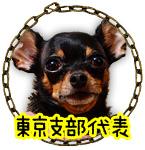 東京支部代表