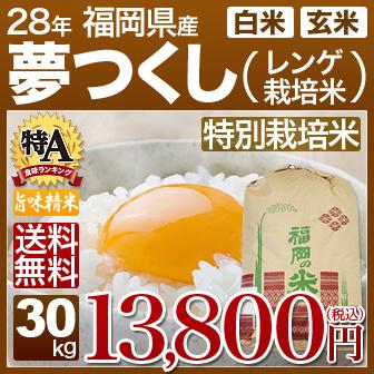 福岡県 夢つくし(特別栽培米)