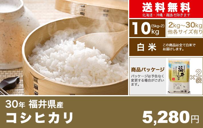 新米 30年 福井県 コシヒカリ 10kg(5kg×2袋)