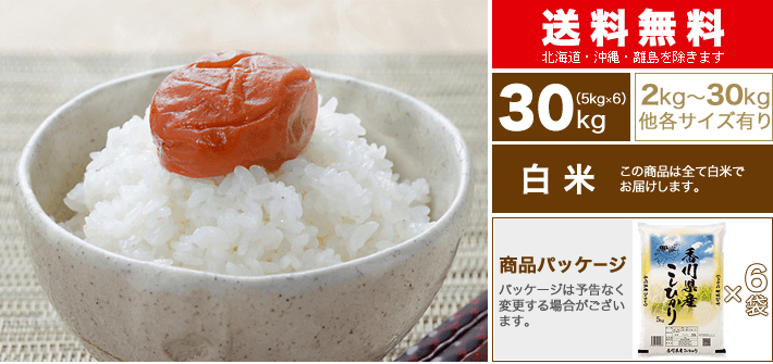 新米 30年 香川県 コシヒカリ 30kg