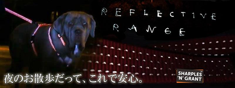 Reflective Range