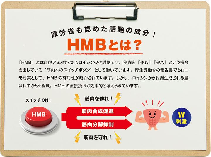 """「HMB」とは必須アミノ酸であるロイシンの代謝物です。筋肉を「作れ」「守れ」という指令を出している""""筋肉へのスイッチボタン""""として働いています。厚生労働省の報告書でもロコモ対策として、HMBの有用性が紹介されています。しかし、ロイシンから代謝生成される量はわずか5%程度。HMBの直接摂取が効率的と考えられています。"""