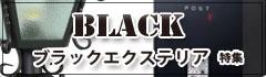 ブラックエクステリア