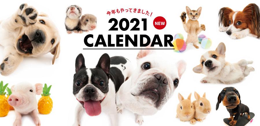 THE DOG THE CAT カレンダー2021