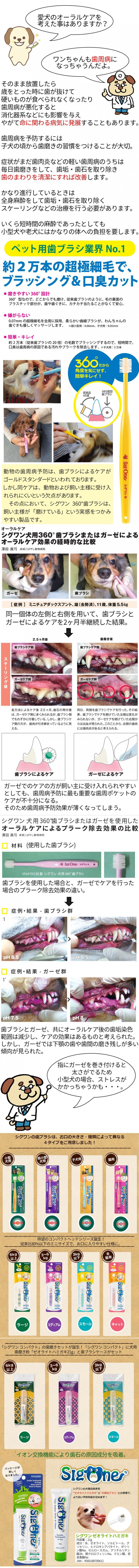 歯ブラシ説明