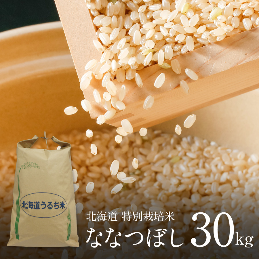 新米 特別栽培米 ななつぼし 玄米 30kg