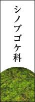 シノブゴケ科