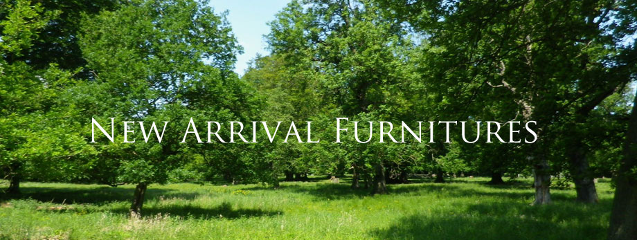 New Arrival Furnitures