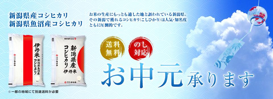 お中元承ります 新潟県産コシヒカリ 新潟県魚沼産コシヒカリ