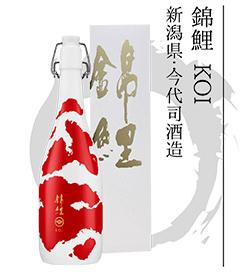錦鯉 KOI 新潟県・今代司酒造
