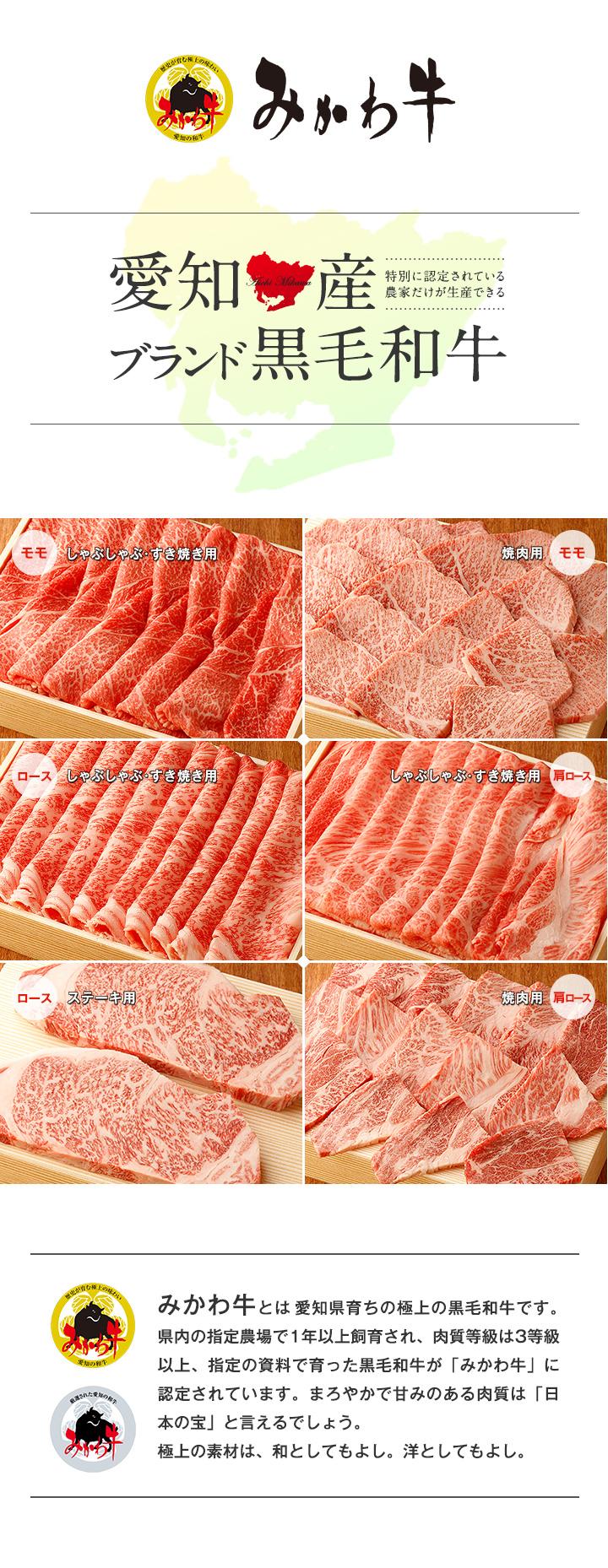 愛知県産 ブランド 黒毛和牛