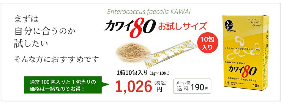カワイ球菌お試しサイズ80