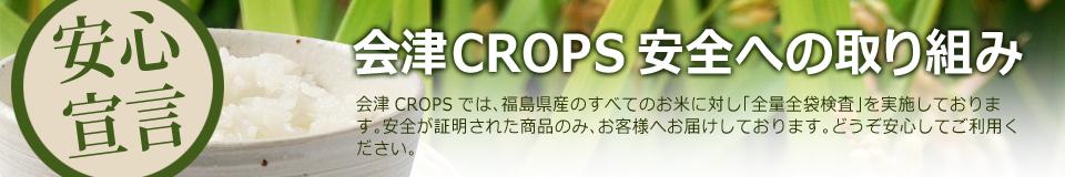 会津CROPSの放射線対策