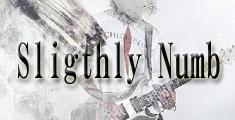 急上昇のアジアン・ロックブランド Sligthly Numb