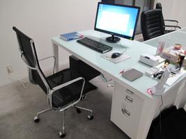 Executive chair mesh pad