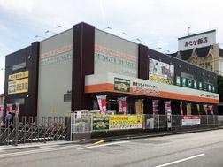 ジャングルジャングル滋賀草津店
