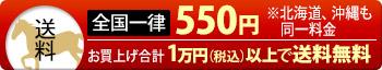 全国一律550円※北海道、沖縄も同一料金