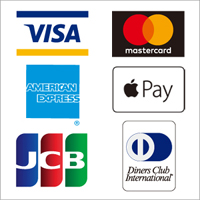 VISA, master card, AMERICAN EXPRESS, Apple Pay, JCB, Diners Club