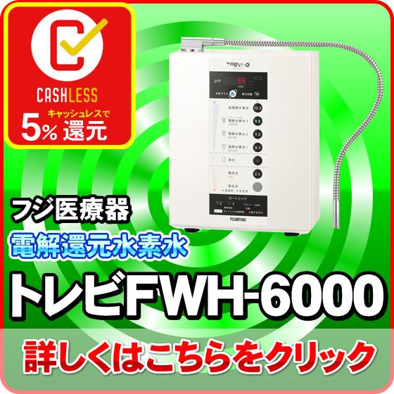 電解水素水生成器FWH-6000