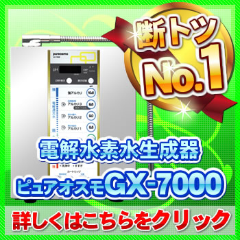 ���ǿ�������ԥ奢������GX-7000