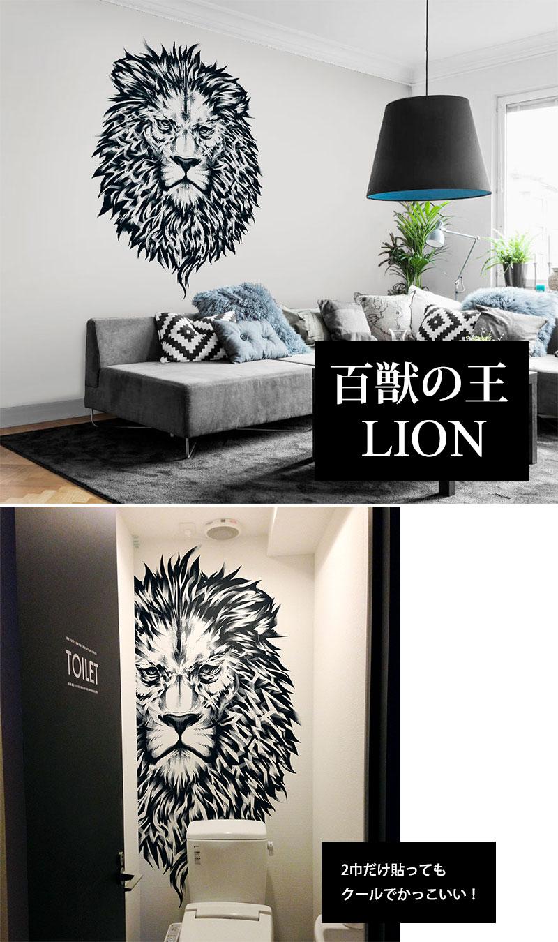 Lion img2